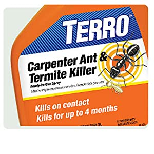 Carpenter ant and termite killer Kills on contact Keeps killing for up