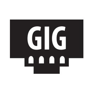 Gigabit Connection for Home and SOHO
