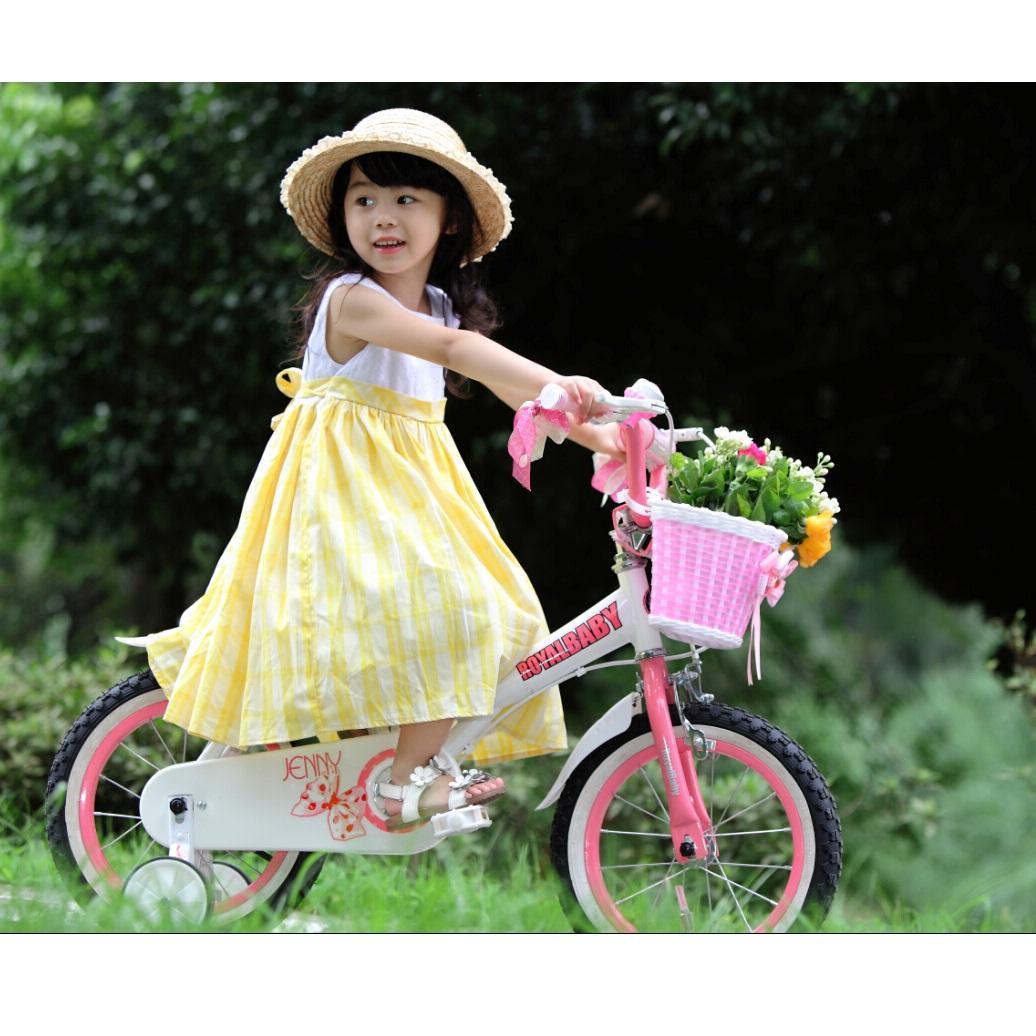 Amazon Com Royalbaby Jenny Princess Pink 12 Inch Girls