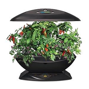 Miracle Gro Aerogarden 7 Indoor Garden With Gourmet Herb Seed Kit Black Plant