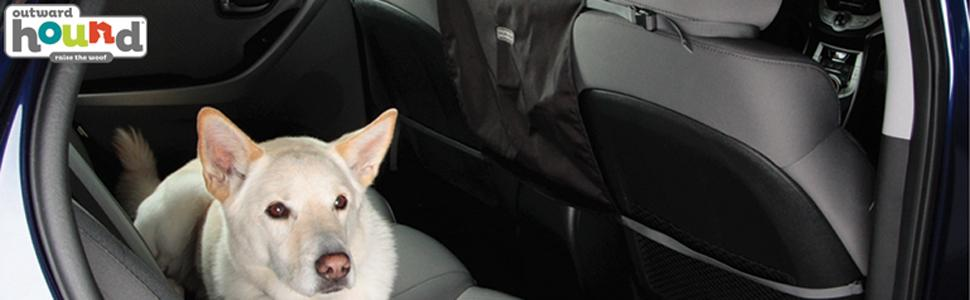 dog travel gear