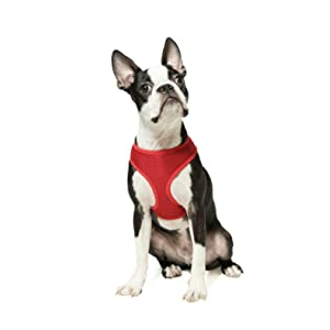gooby freedom dog harness