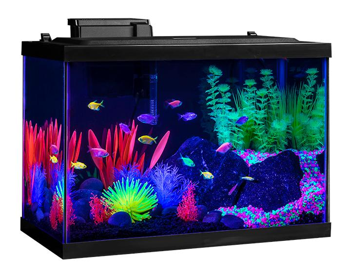 View larger for 20 gallon fish tank kit