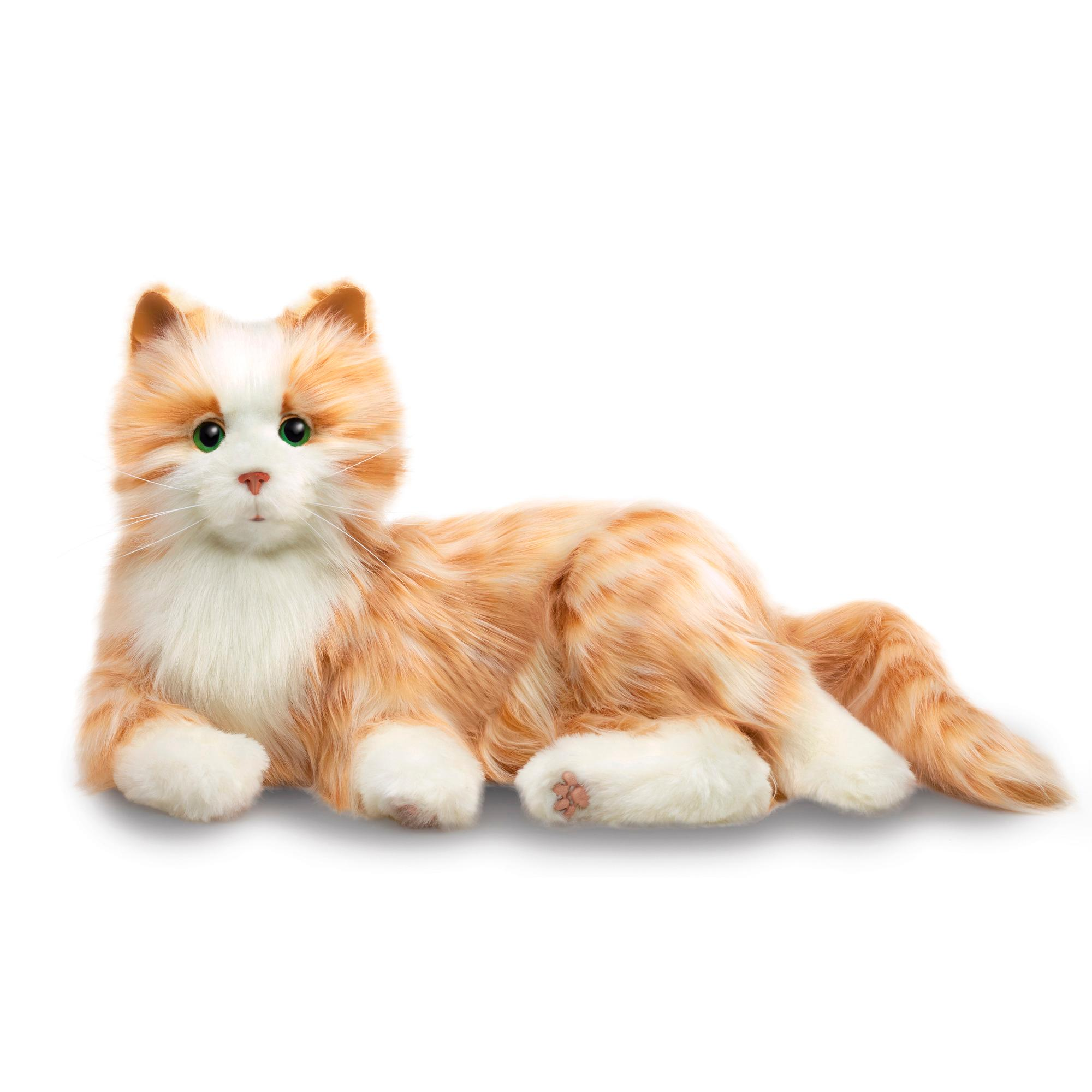 Kids Cat Stuffed Toy
