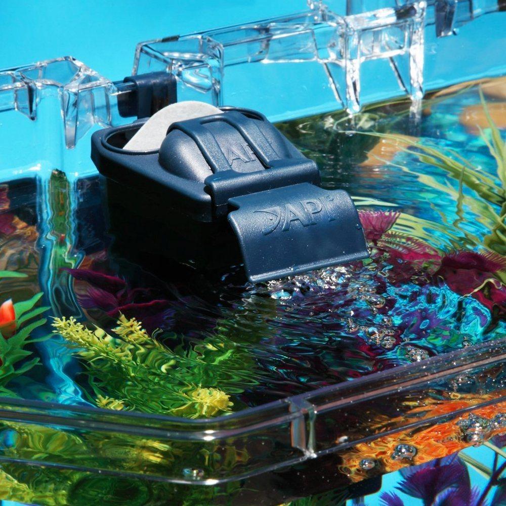 Amazon.com : API Semi-Hex Aquarium Kit with LED Lighting and Internal Filter, 6-1/2-Gallon : Pet