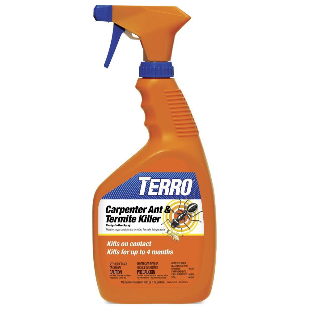 carpenter ants and termites with terro carpenter ant termite