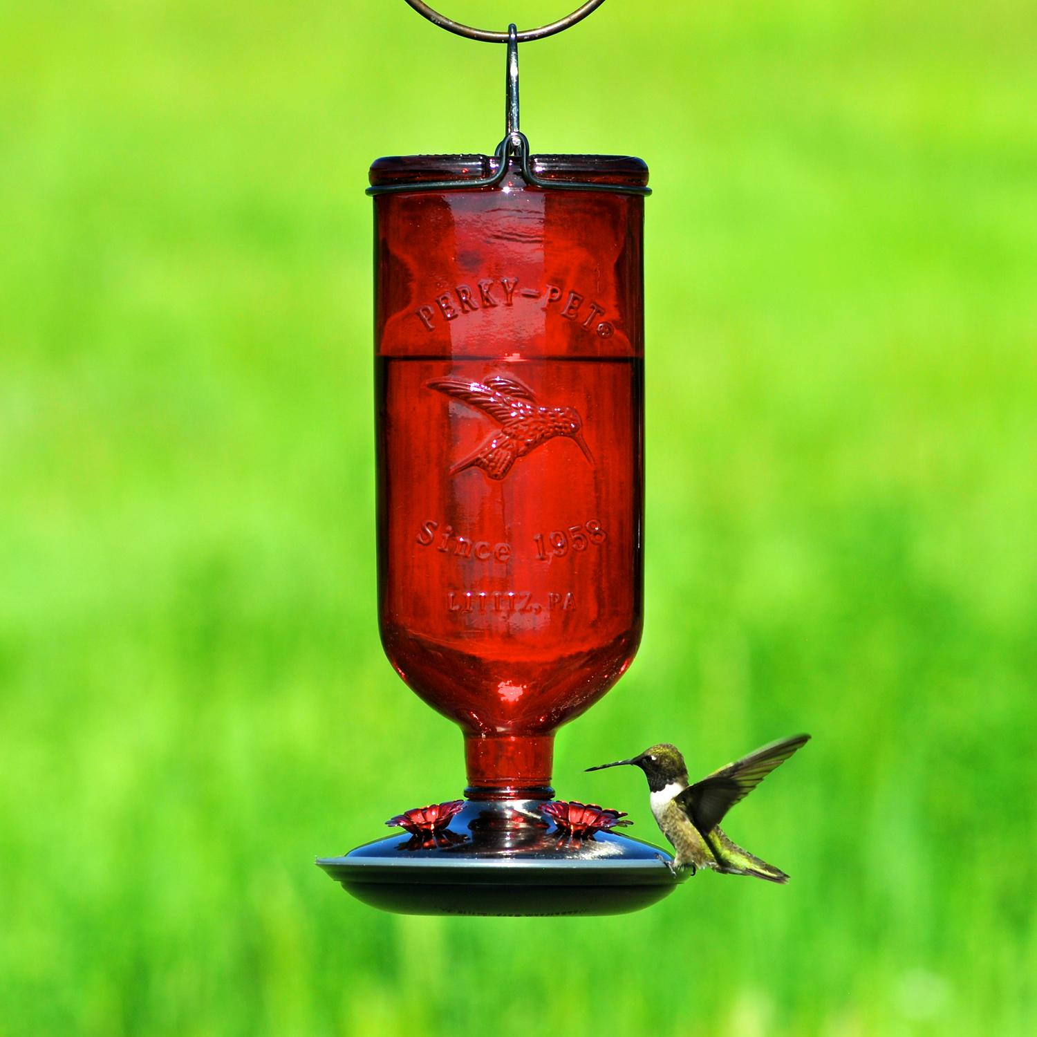 Perky Pet Red 16 Oz Antique Glass Bottle Hummingbird Feeder