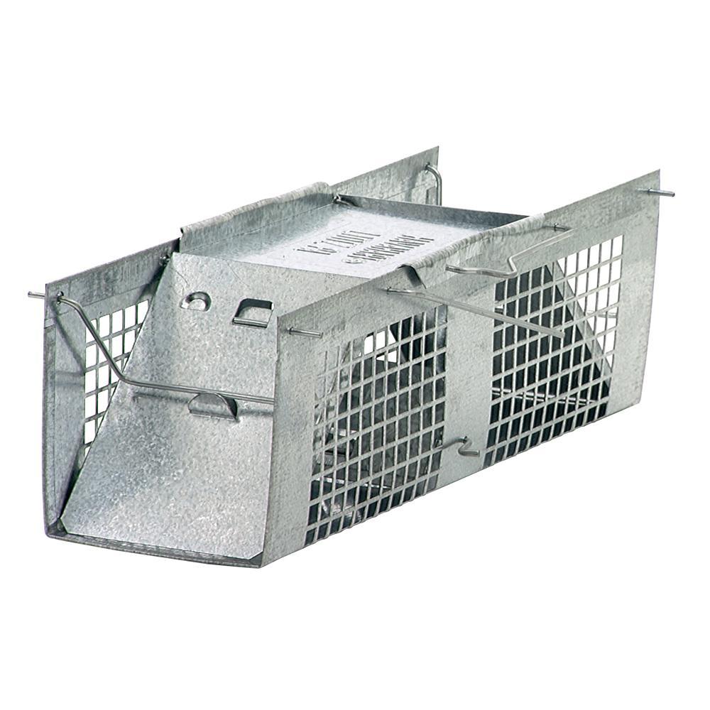 Amazon.com : Havahart 1020 Live Animal Two-Door Mouse Cage Trap
