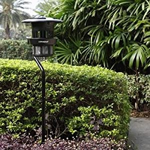 insect trap, mosquito trap, Dynatrap, DT1200, asian beetle trap