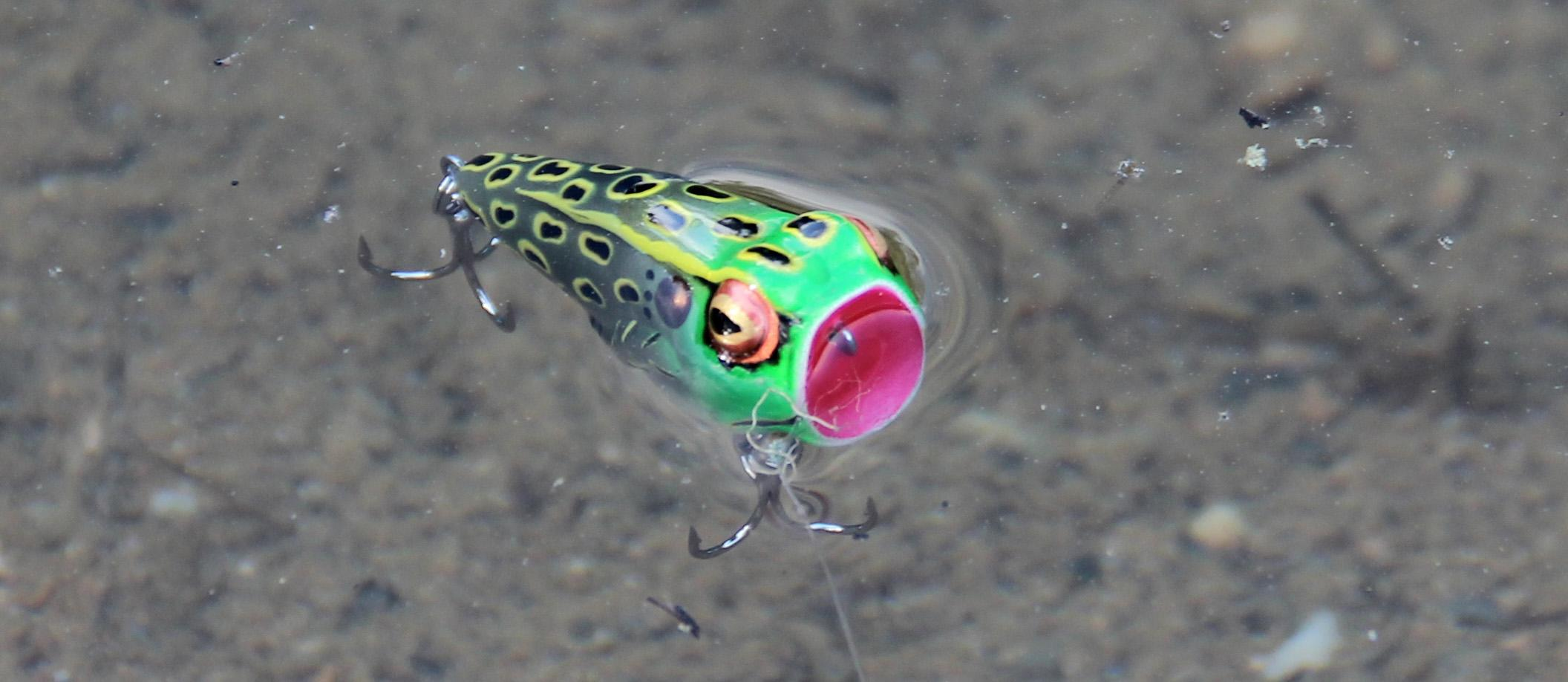 Rebel pop 39 n frog leopard frog fishing for Amazon fishing lures