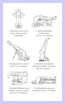 [PDF] Light On Yoga Download Full – PDF Book Download