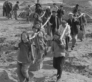 On the Causes of China's Agricultural Crisis and the Great Leap Famine