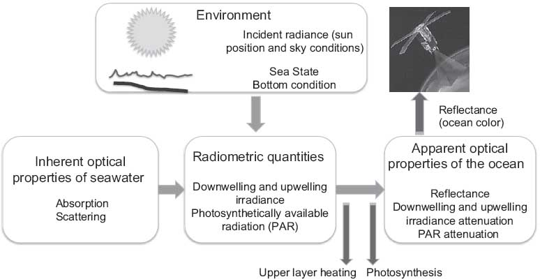 Sample chapter from <i>Descriptive Physical Oceanography</i>
