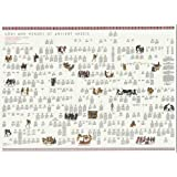 Gods and Heroes of Ancient Greece: An Illustrated Wallchart