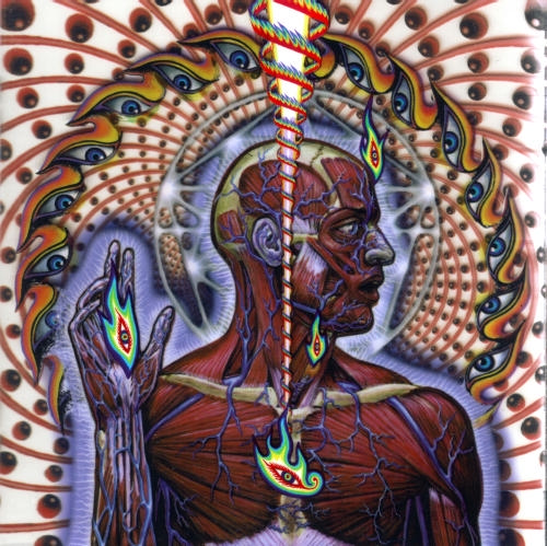 TOOL Album Poll #3: LATERALUS