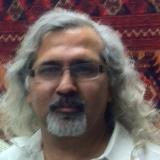 Image of Masood A. Raja