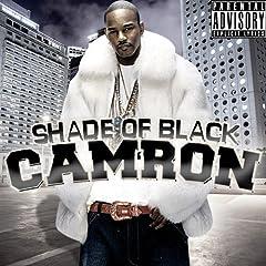 wiki crime pays camron album