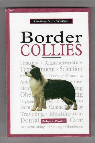 A New Owner's Guide to Border Collie