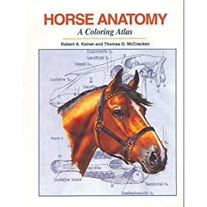 Horse Anatomy : A Coloring Atlas [Paperback]