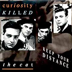 Curiosity Killed The Cat Keep Your Distance Blogspot