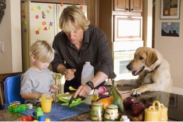 Dog Movie Owen Wilson