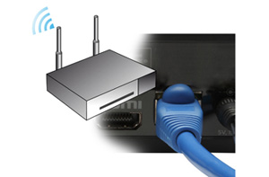 Roku plug detail