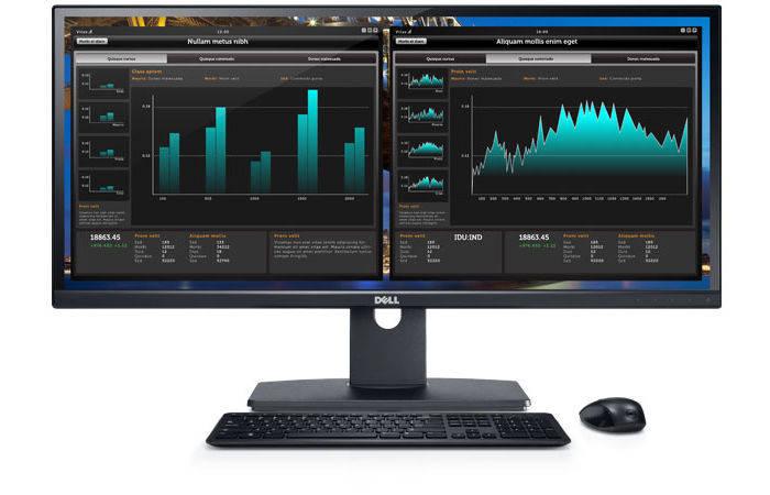 Dell UltraSharp U2913WM 29