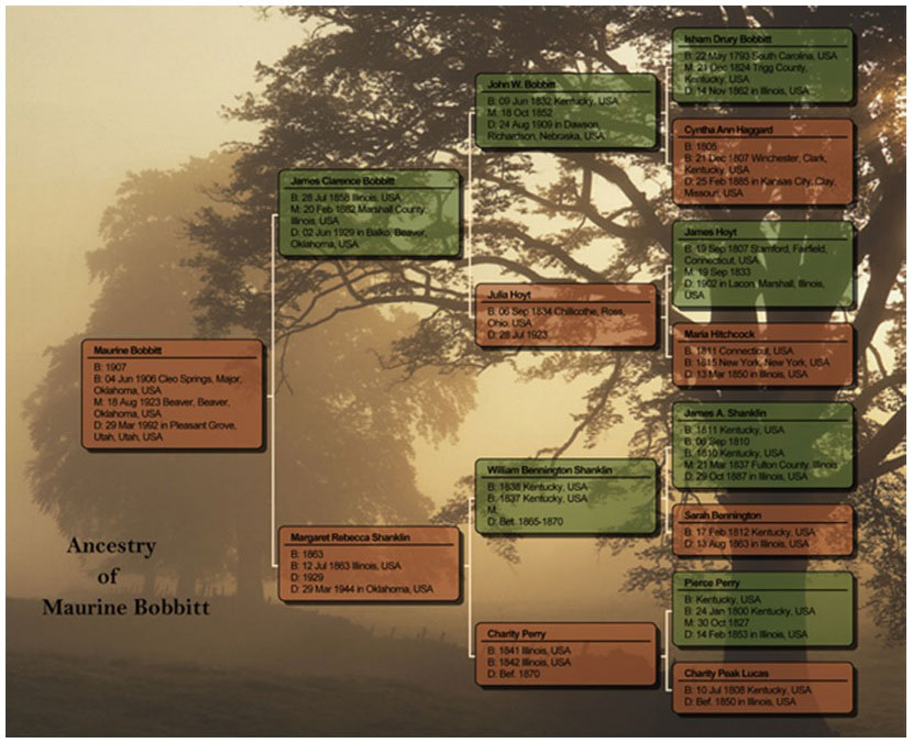 Family tree maker for mac 2 old version for Ancestry book templates