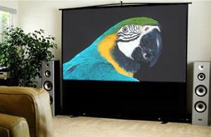 Elite Screens ezCinema Floor Pull-Up Projection Screen