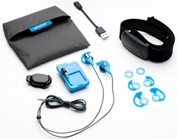 Pear Fitness Biofeedback Training System