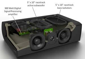 Definitive Technology CS-8080HD Powered Subwoofer (Center ...