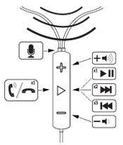 Image S5i Chart