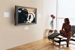 Bose Virtually Invisible 191 speakers Amazonca Electronics