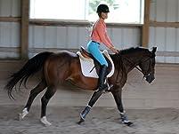 Private Horseback Riding Lesson
