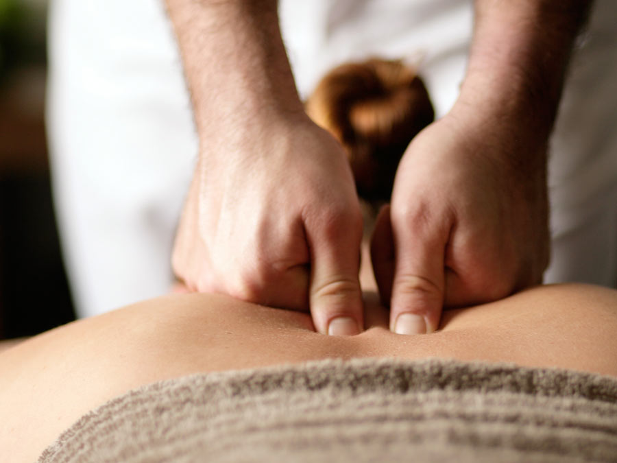 Massage or CranioSacral Therapy Session