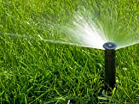 Drip Irrigation or Sprinkler Tune-Up and Inspection