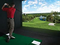 Simulated Golf for One, Two, or Four