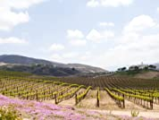 Romantic Escondido Foothills Stay with Winery Tours