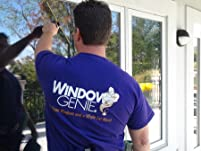 Window or Gutter Cleaning