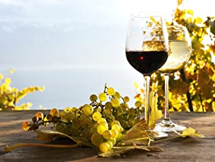 Wine Tasting Package at Laguna Canyon Winery