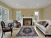 Oriental or Area Rug Cleaning