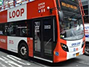 Bus Tour with OPEN LOOP New York