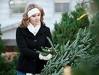 Fraser Fir Christmas Tree and Santa Visit