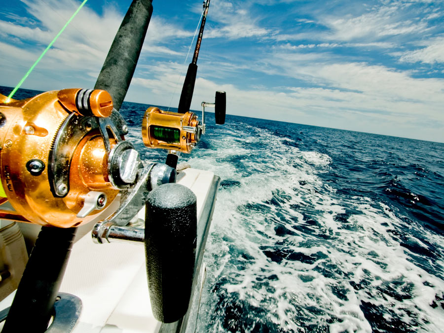 Four-Hour Sport-Fishing Trip