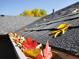 Roof Cleaning and Inspection with Gutter Cleaning