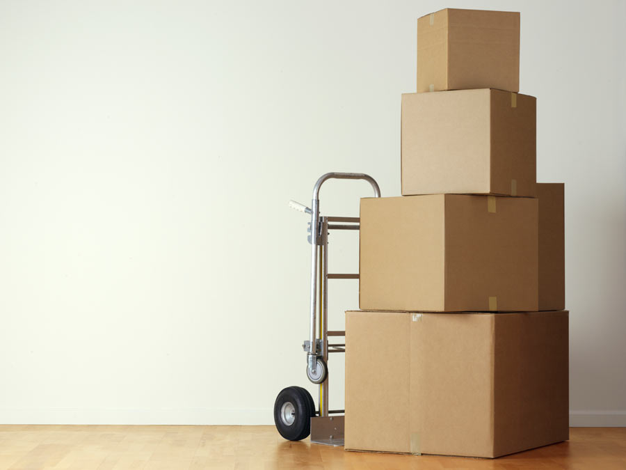 Moving or Professional Packing Service