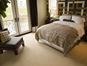 Deep-Scrub Carpet Cleaning for Five Rooms