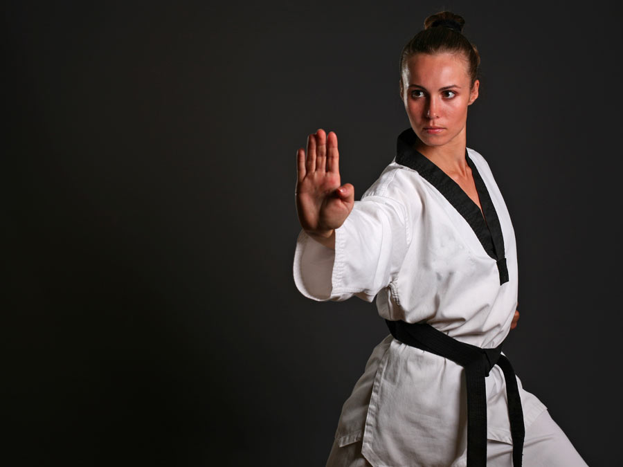 Classes from True Martial Arts / Maxx Fitness