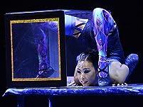 "Ticket to Big Apple Circus's ""Metamorphosis"""