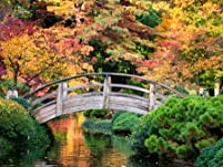 Japanese Garden Tickets with Lunch